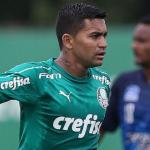 Dudu, en un partido del Palmeiras / Diario Más.